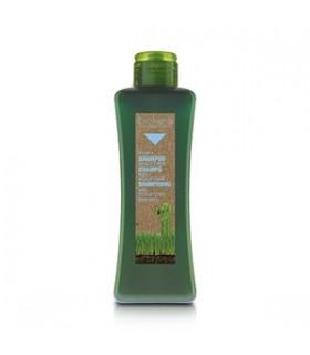 Shampooing Miel Scalp Care 300 ml Biokera Maroc